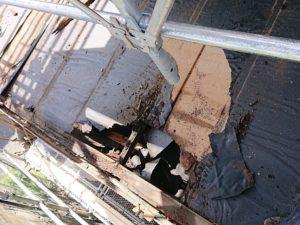 外壁塗装・屋根塗装・越谷市